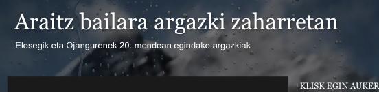 ARAIZKO ARGAZKI ZAHARRAK